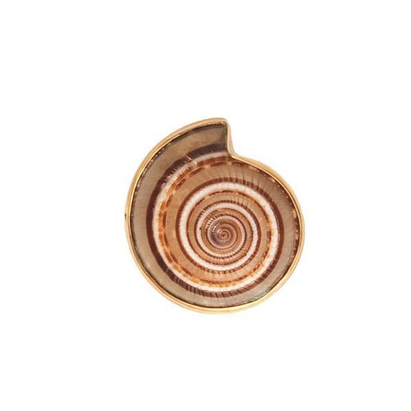 Alchemia Sundial Shell Adjustable Ring